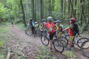 Circuit MOUNTAIN BIKE of Rothonne forest : the fox