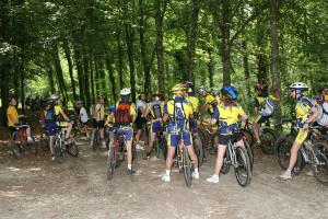 Circuit MOUNTAIN BIKE of Rothonne forest: the stag